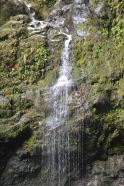 We actually swam under this trickle of a waterfall - the force of it felt like the world was crashing down on us!
